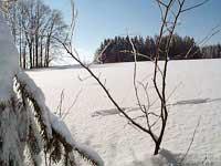 Winter in Bayern - Spuren im Schnee